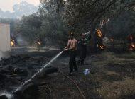Σειρά πρωτοβουλιών για την πυρόπληκτη βόρεια Εύβοια