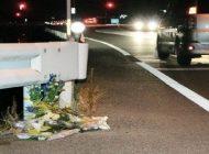 Οδηγός φορτηγού στην Ιαπωνία σκότωσε πεζό ενώ οδηγούσε παίζοντας Pokemon Go