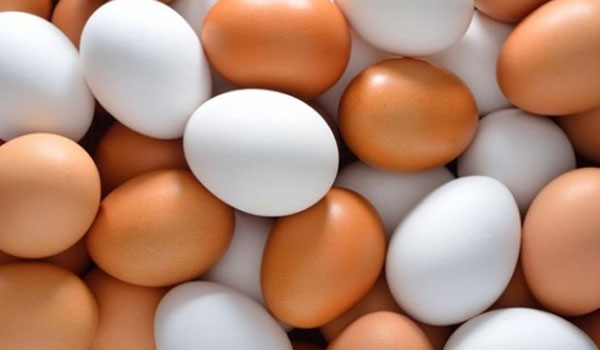 Προσοχή όταν αγοράζετε αυγά  Τι πρέπει να γνωρίζετε - LamiaNow.gr ... 8f7c9a98a79