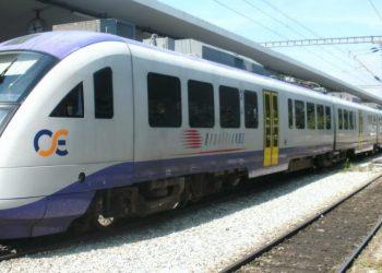trainose 0 scaled