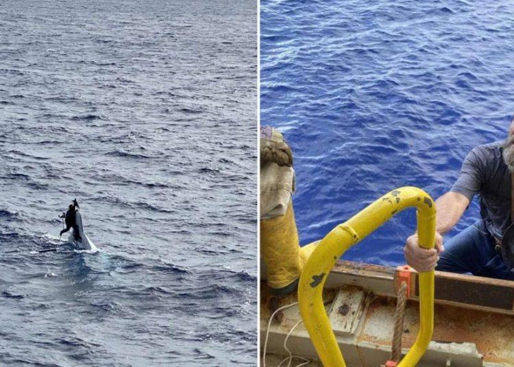 skynews stuart bee sailor rescue 5189822