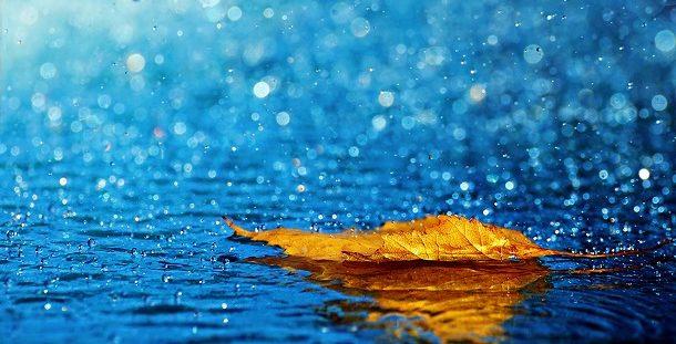rain hd wallpapers e1555252747322