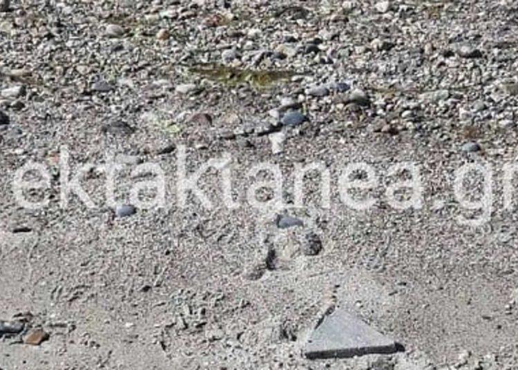 Mixaniona Mihaniona osta ektaktaneagr 01 03 2021 1536x1013 1